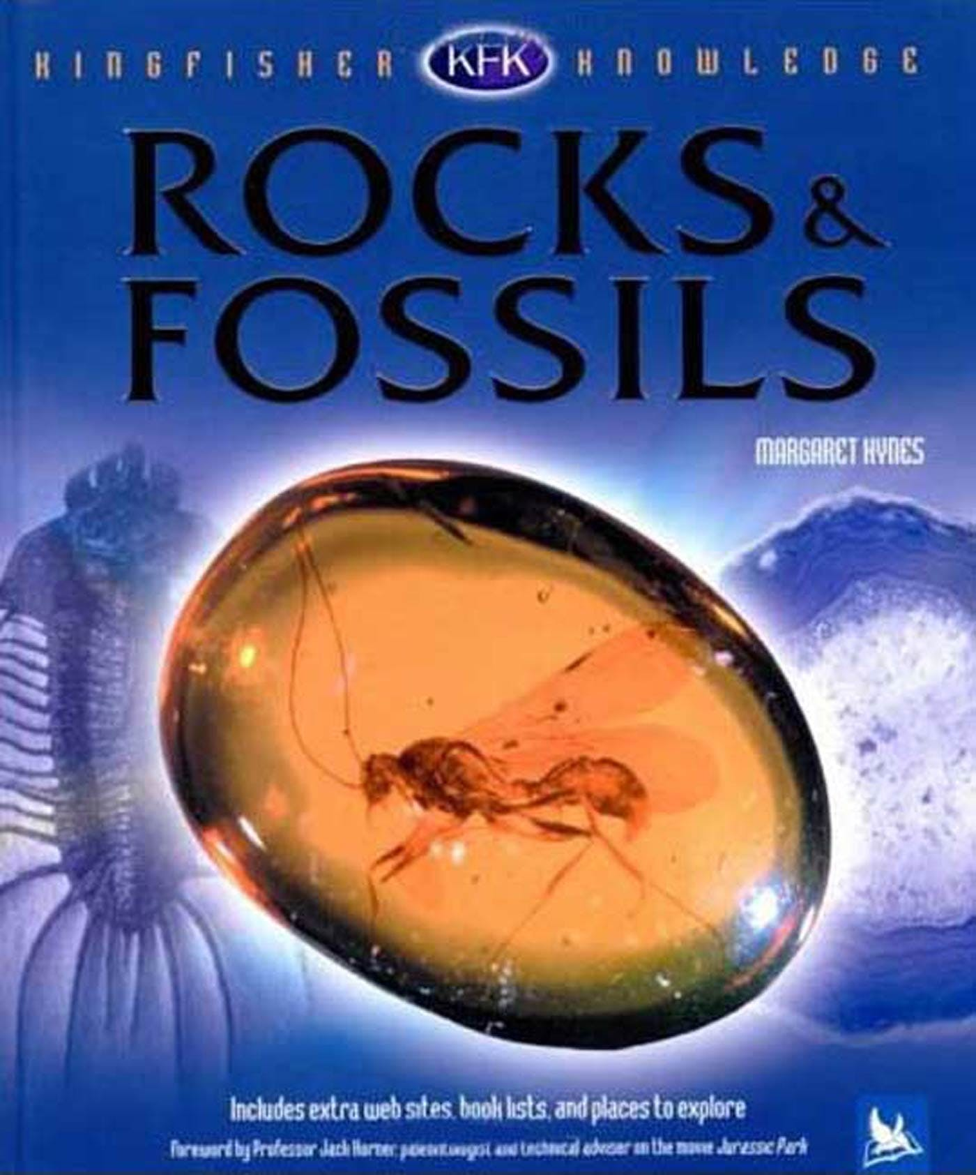 Image of Kingfisher Knowledge: Rocks and Fossils