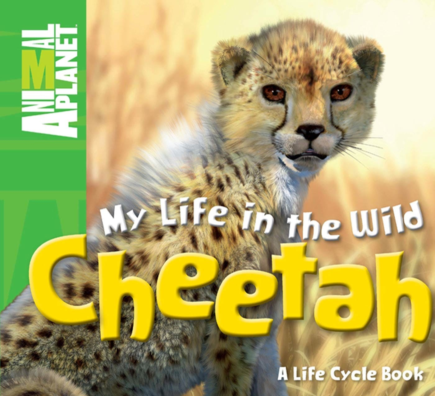 Image of My Life in the Wild: Cheetah