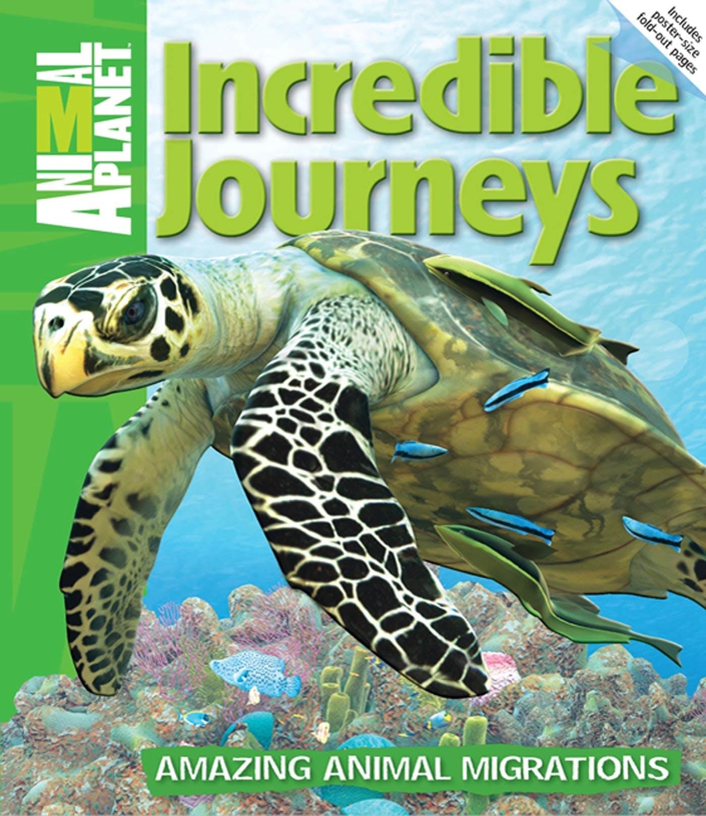 Image of Incredible Journeys