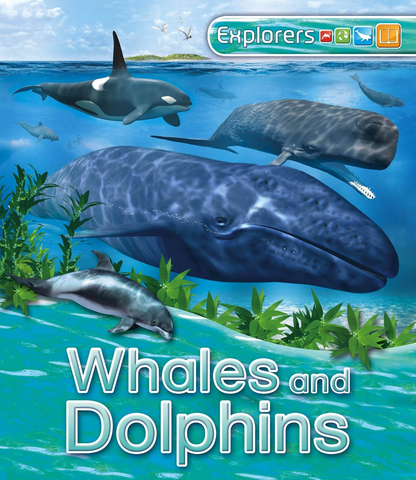 Image of Explorers: Whales and Dolphins