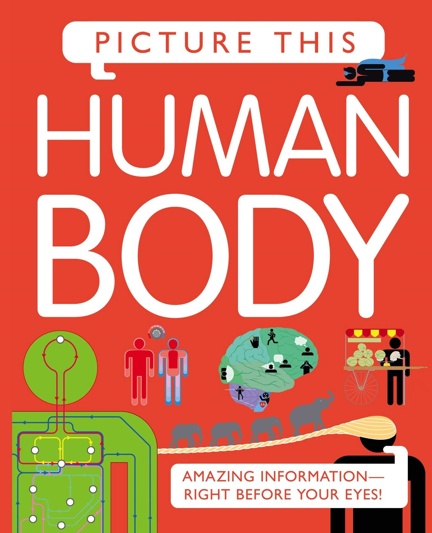 Image of Picture This! Human Body