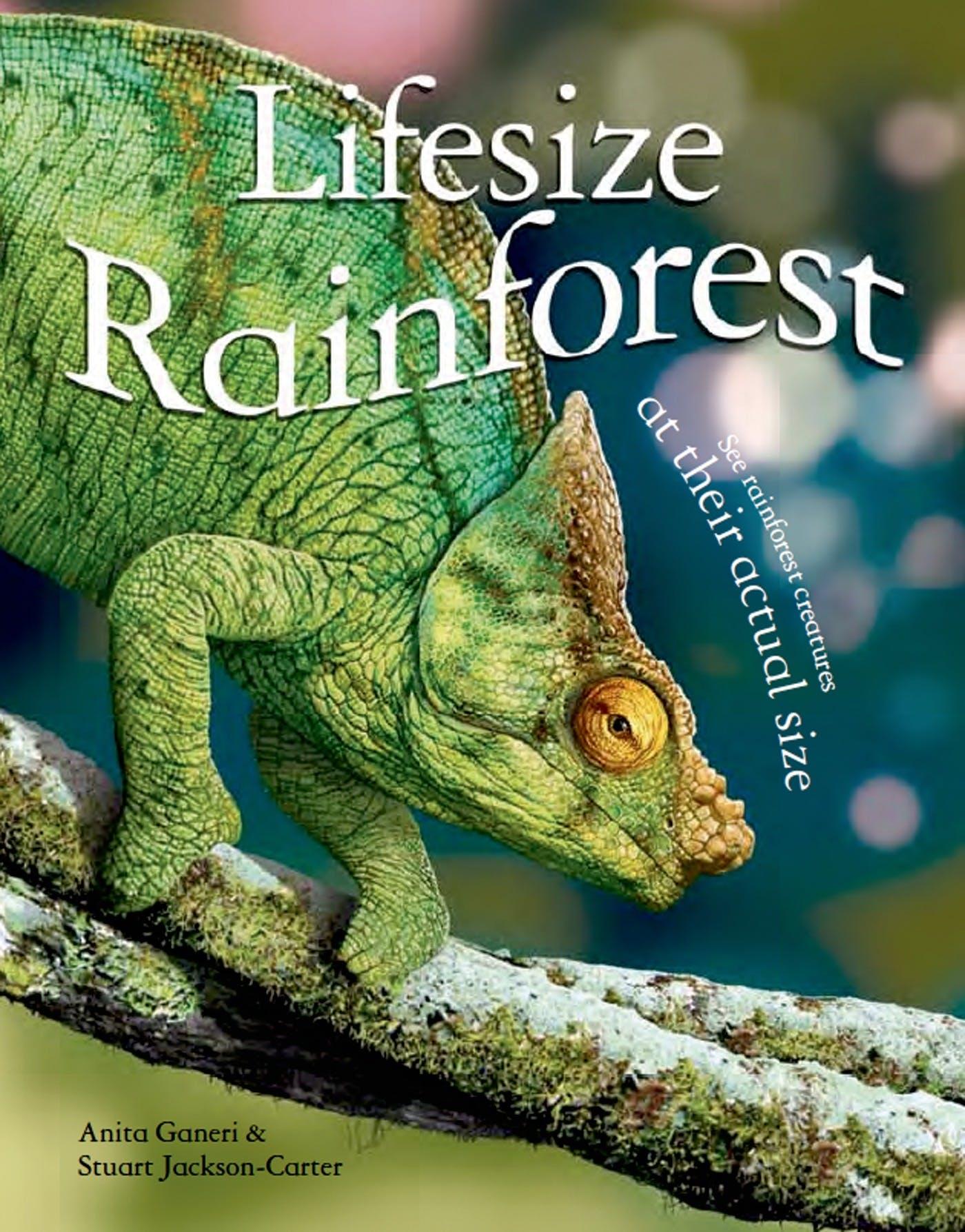 Image of Lifesize: Rainforest