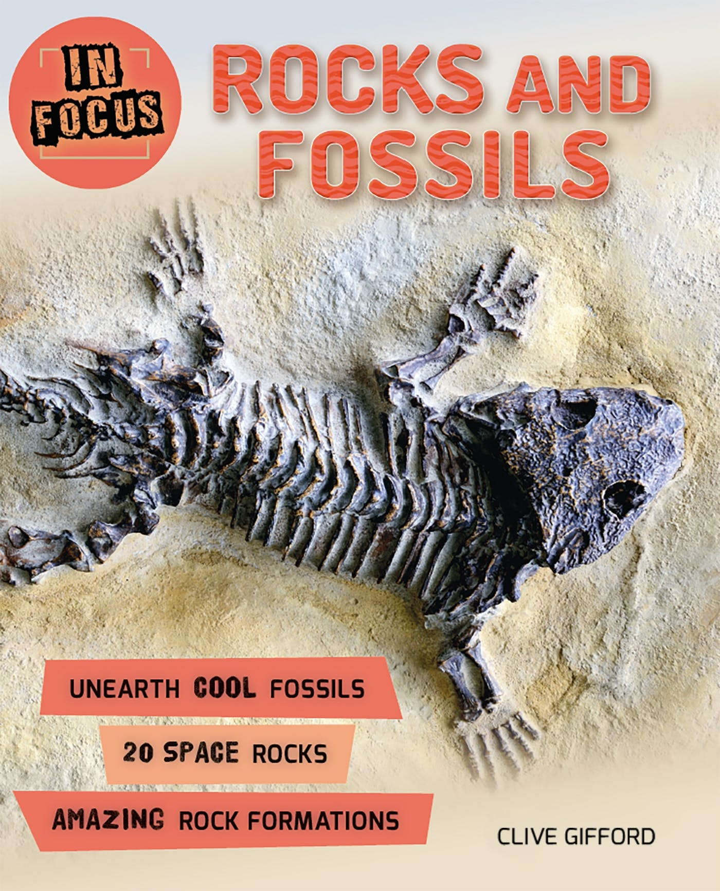Image of In Focus: Rocks and Fossils