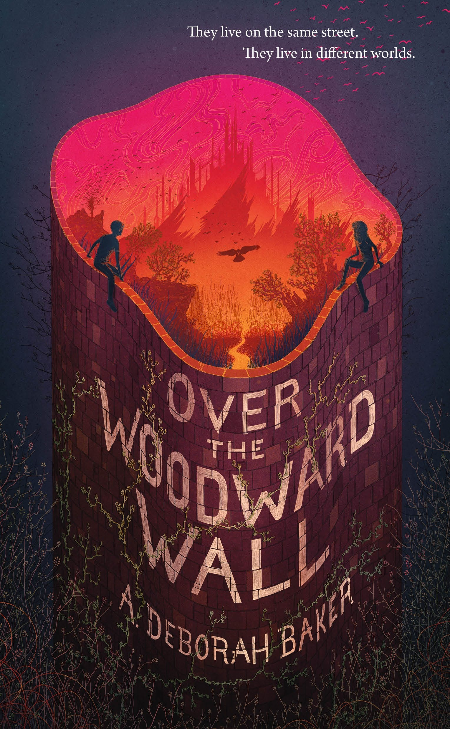 Image of Over the Woodward Wall