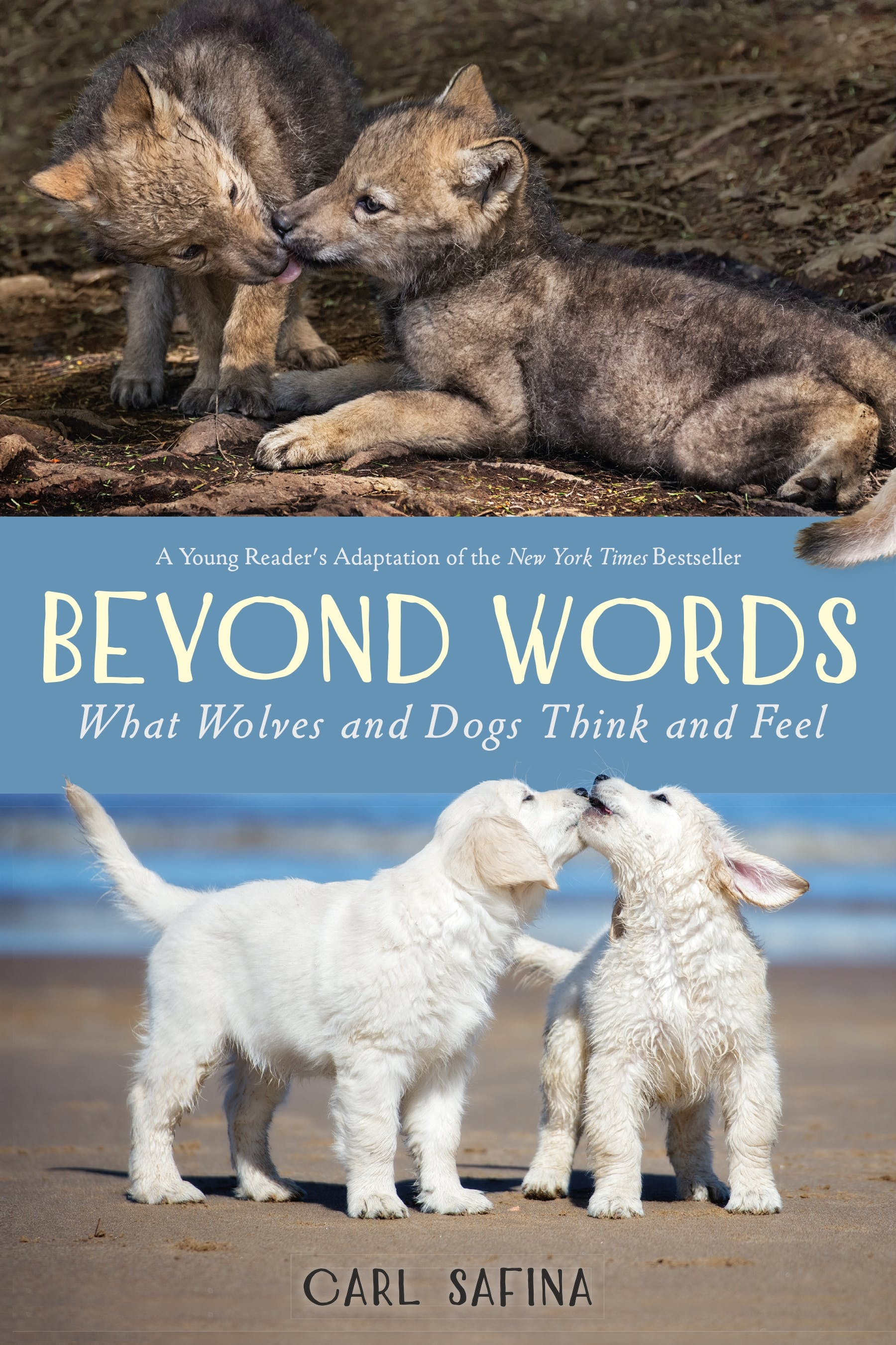 Image of Beyond Words: What Wolves and Dogs Think and Feel (A Young Reader's Adaptation)