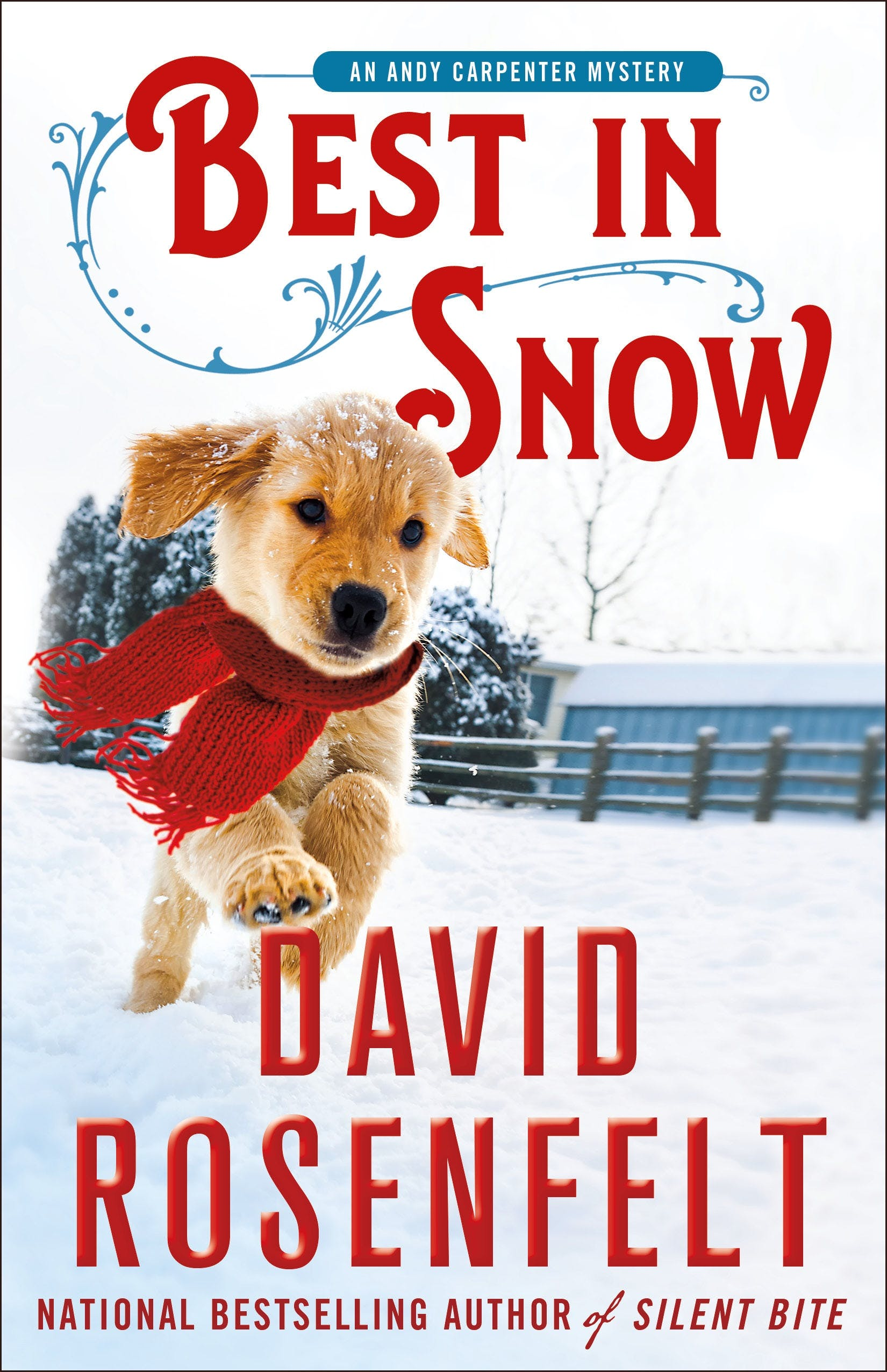 Image of Best in Snow