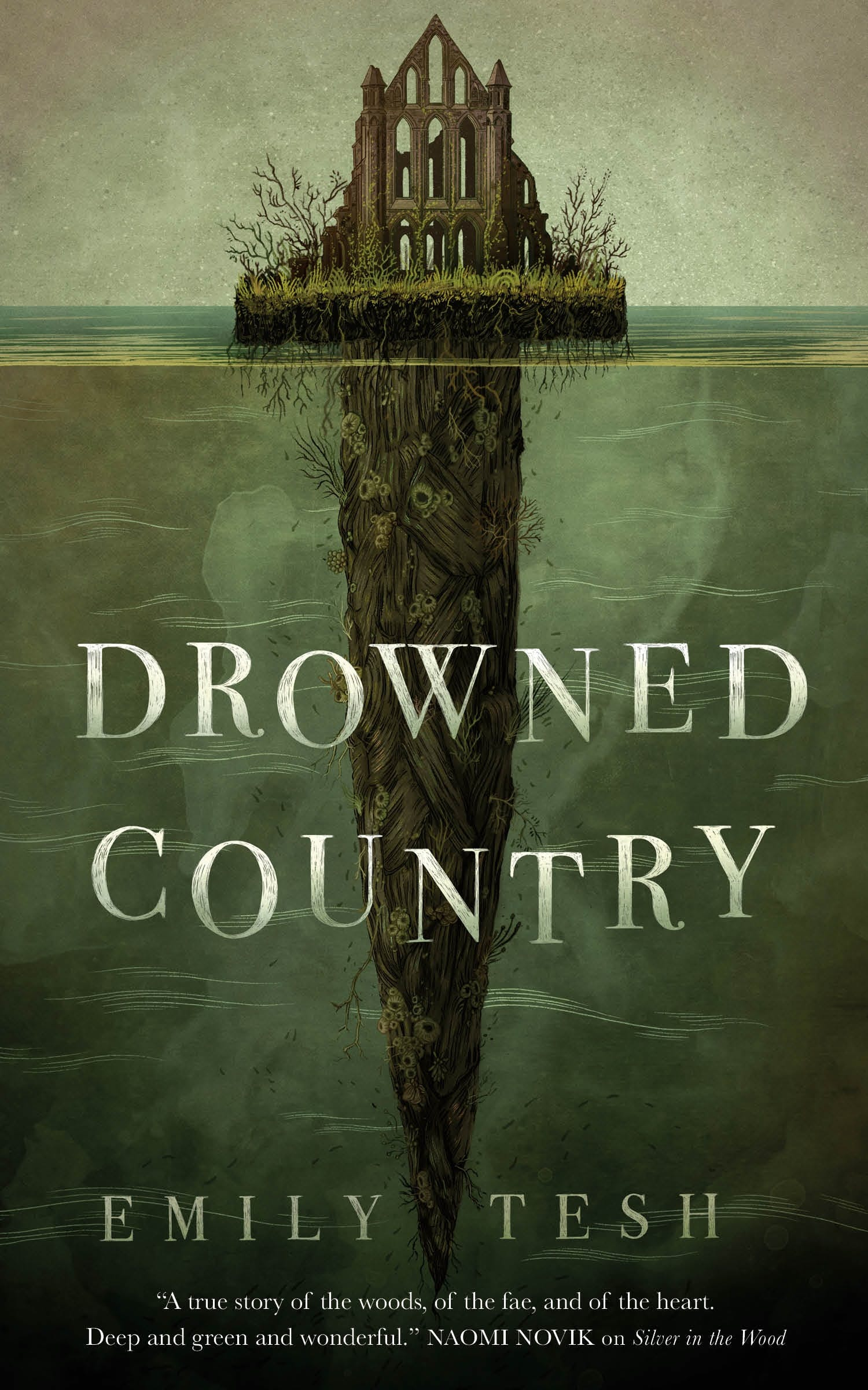 Image of Drowned Country