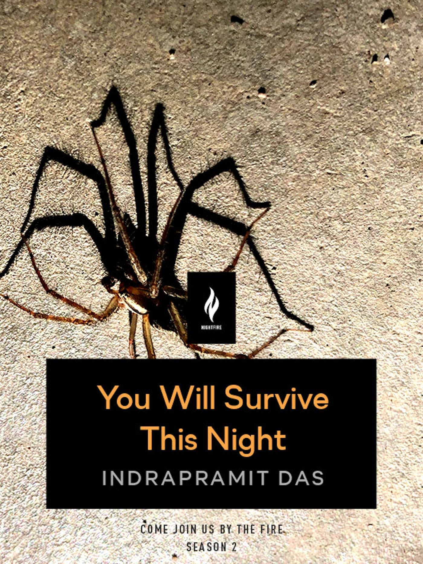 Image of You Will Survive This Night