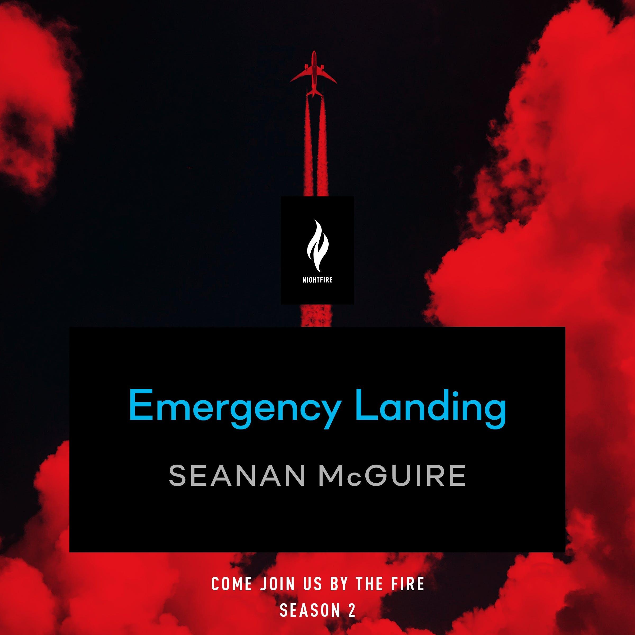 Image of Emergency Landing