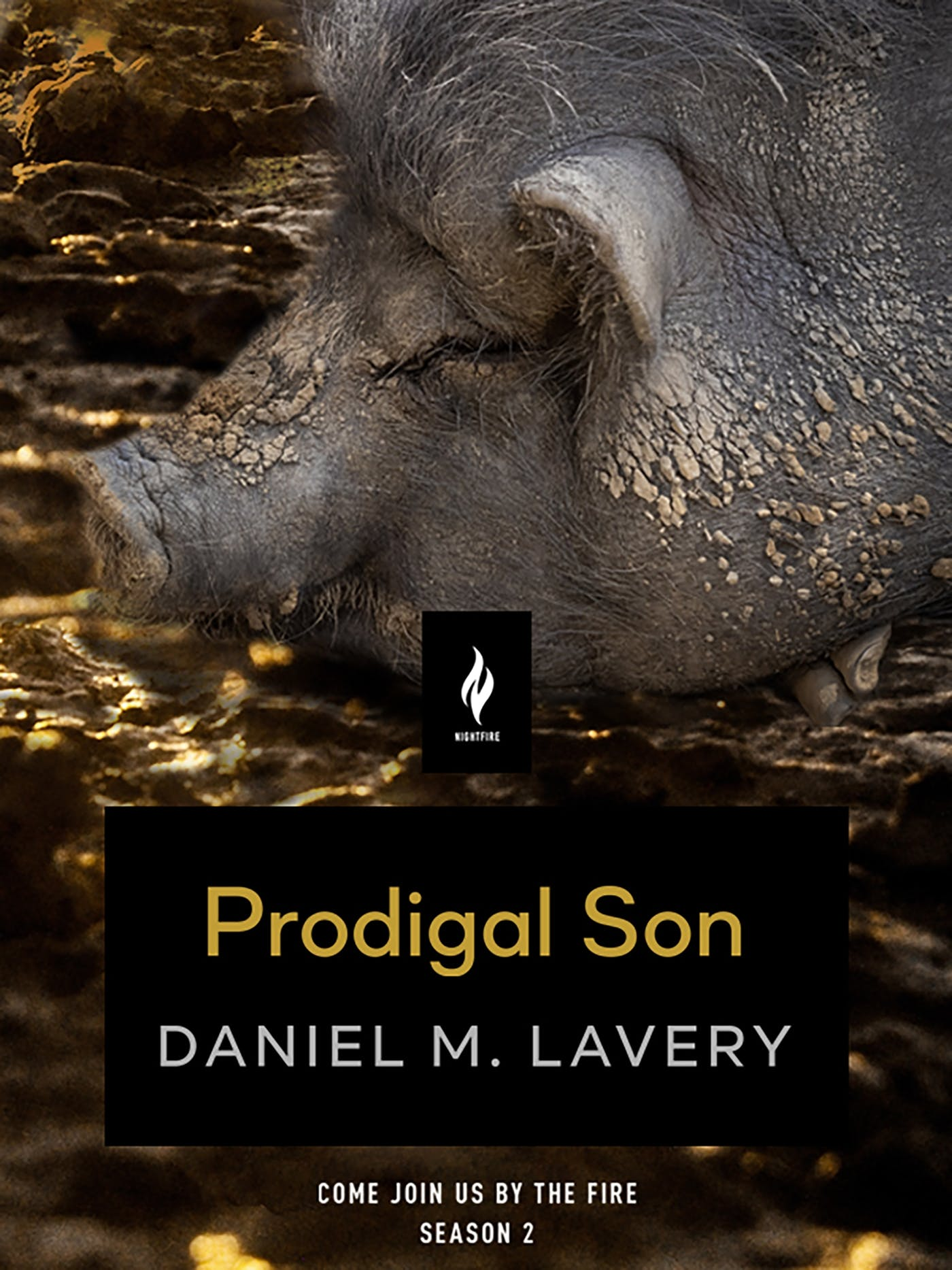 Image of Prodigal Son