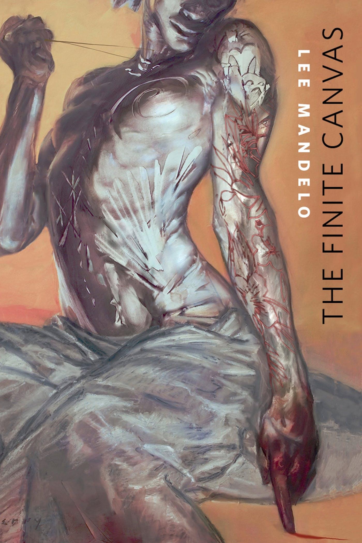 Image of The Finite Canvas