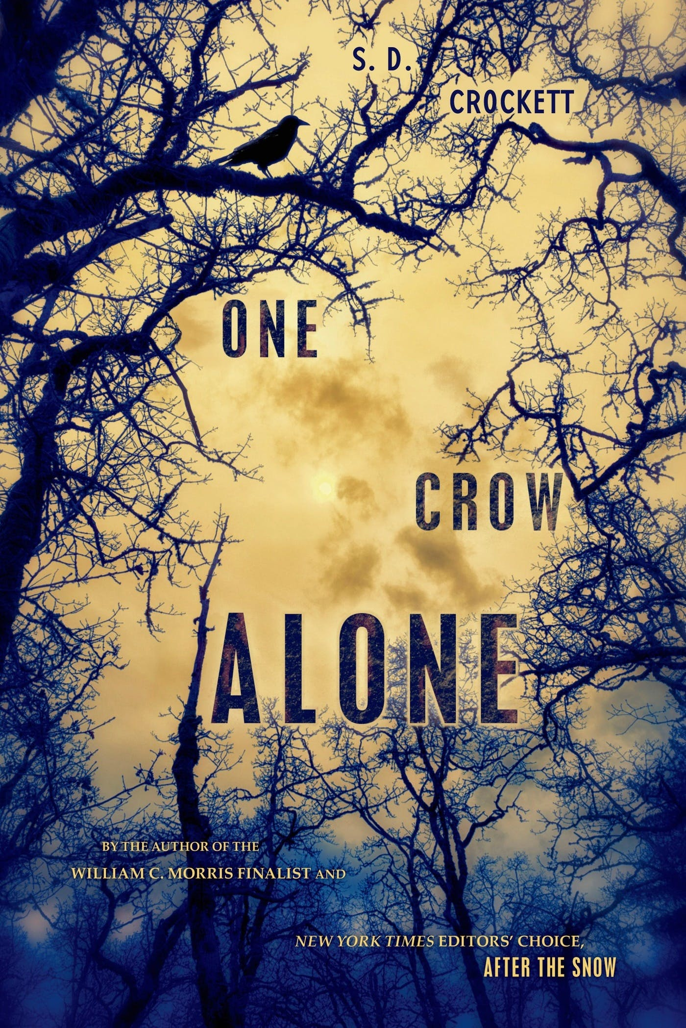 Image of One Crow Alone
