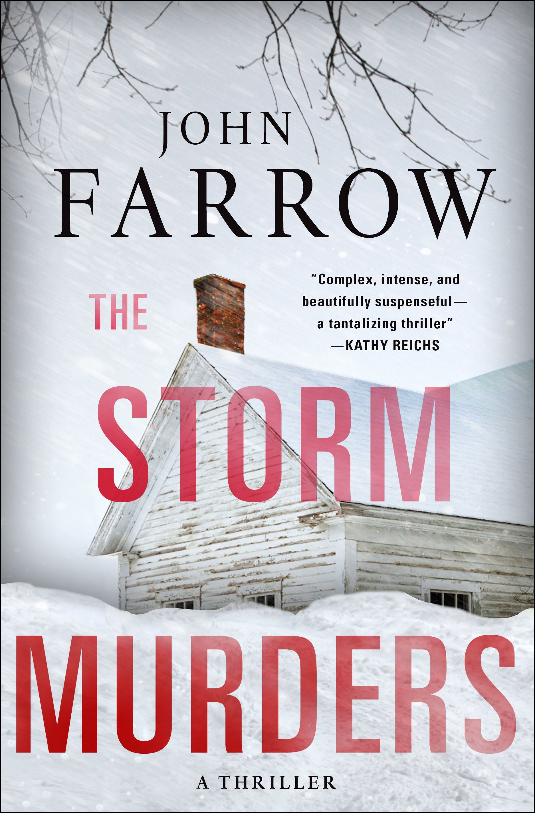 Image of The Storm Murders