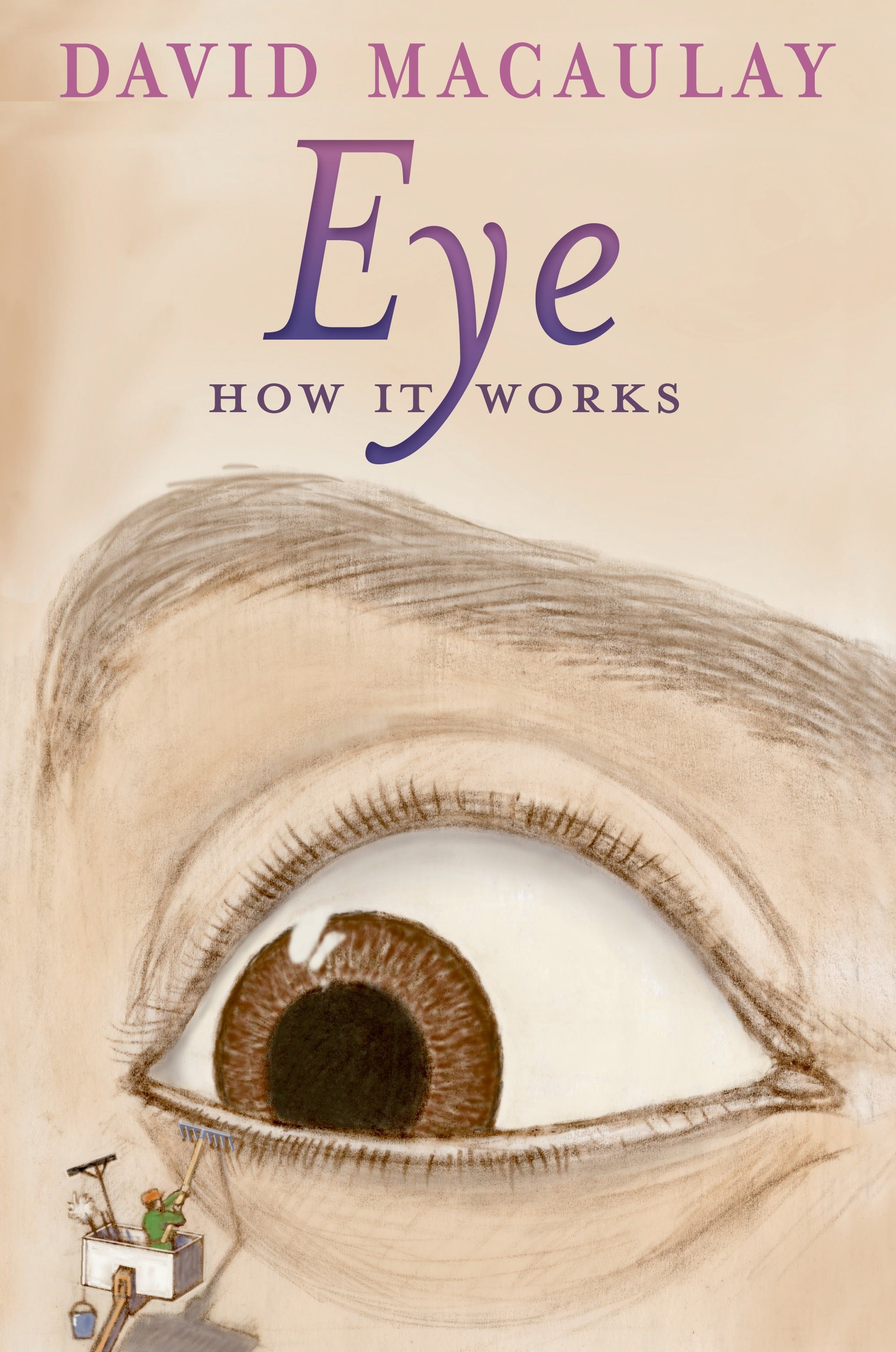 Image of Eye: How It Works